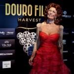 Douro Film Harvest